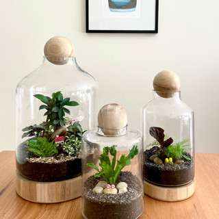 Gardens In Miniature