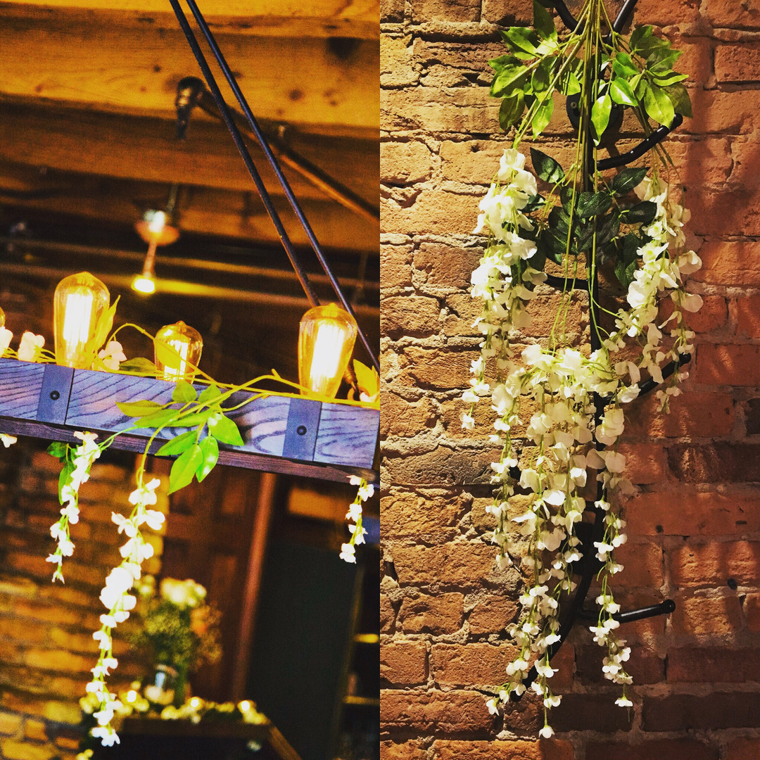 Amaranthus & lights