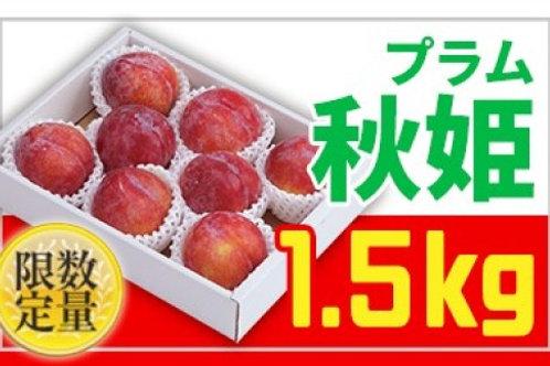 FY18-816 ★生産量日本一★山形プラム(秋姫)1.5kg