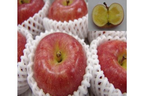 FY19-287 ♪フルーツ王国山形♪こうとくりんご 3kg