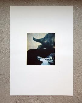 ציליום שקית ניילון וצל  |  Photo of plastic bag and shadow