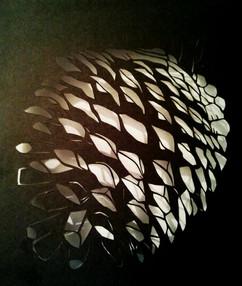 Black Pine cone - אצטרובל שחור