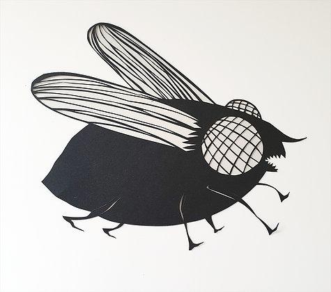 זרובבל הזבוב - חיתוך נייר בעבודת יד      Zrubavel The fly - handmade paper cutti