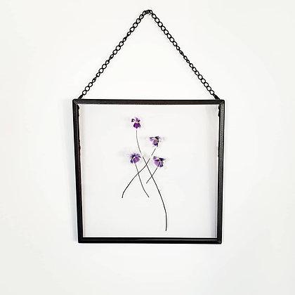 פרחים קטנים מיובשים בתוך מסגרת