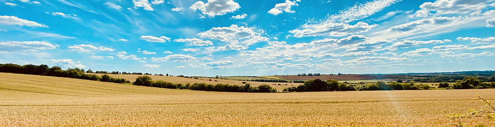 Country side landscape96.jpg