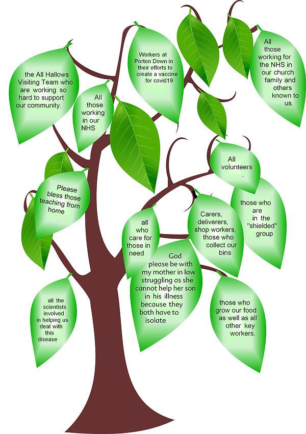 compassion tree.jpg
