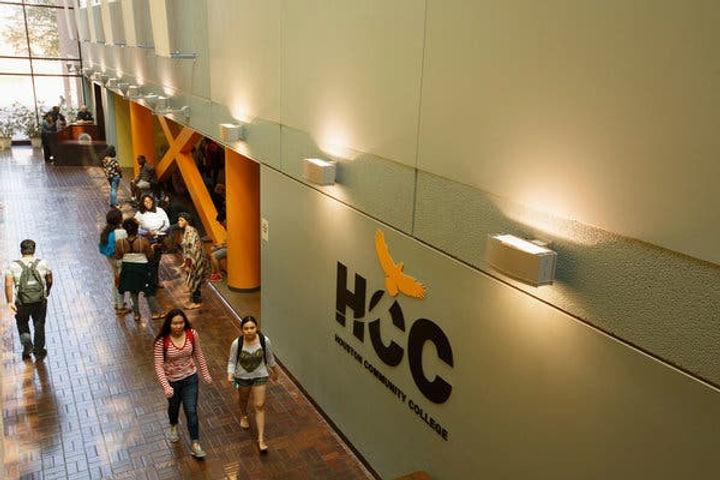 HCC image.jpg