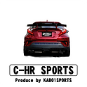 c_hr_sports.png