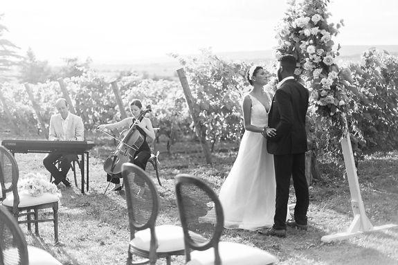 Catherine Little Music Cello, Wedding Ceremony, Bride, Groom at Planters Ridge