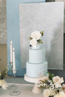 Cake Babes Cake