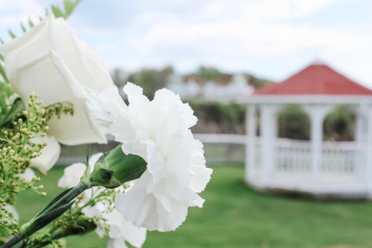 Flowers and Gazebo