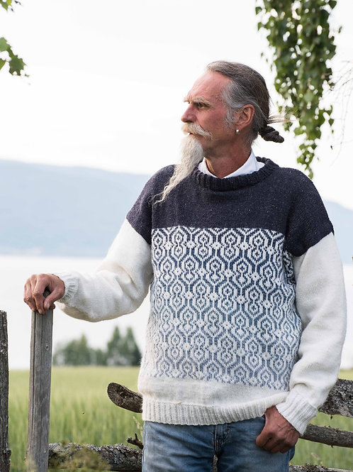 English APU -Men's sweater with color transitions