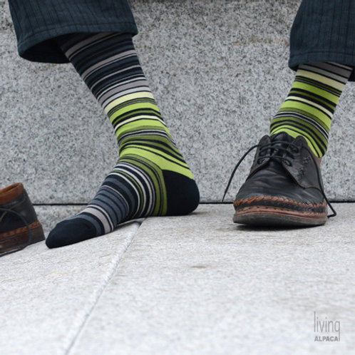 Stripe, herre sokk