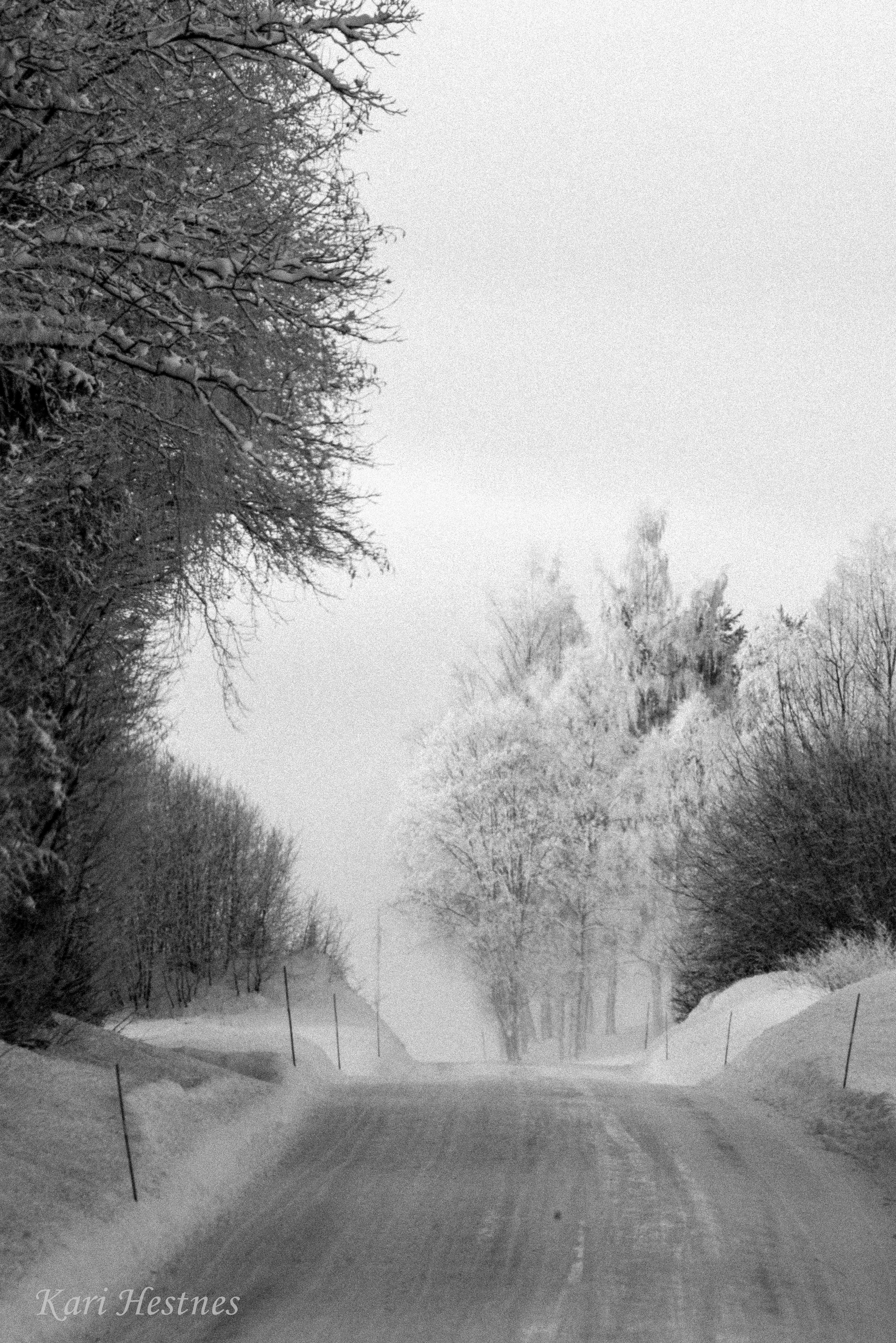 Vintervakkert