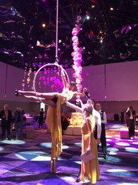 AERIAL CHAMPAGNE SERVICE