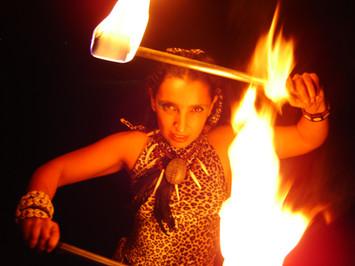 JUNGLE FIRE SHOW
