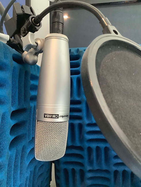 Condenser mic.jpg