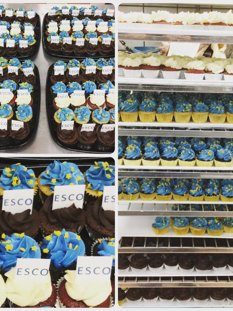 ESCO - Annual meeting with 500 minicupcakes