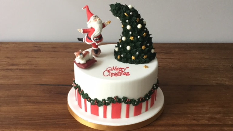 Modelling On Christmas Cake