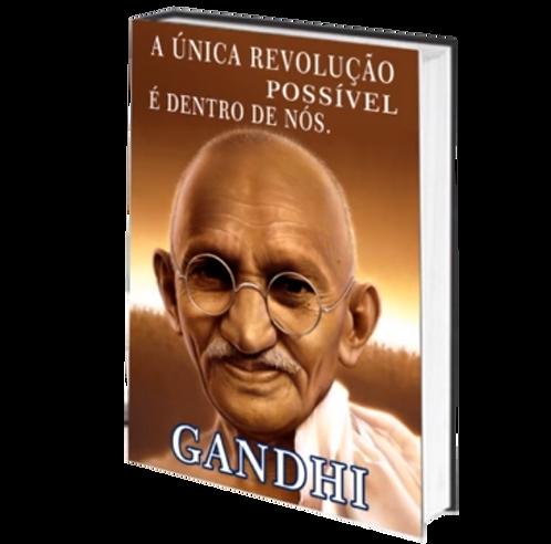 A UNICA REVOLUÇÃO POSSÍVEL - Audiolivro