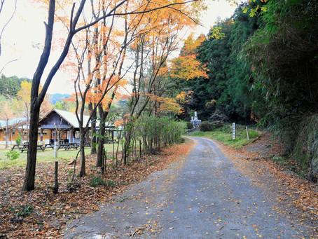 大根地山(おおねちやま)(2020年12月9日)