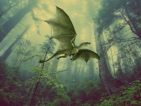 What If Dragons Are Real...and They Really Fly!