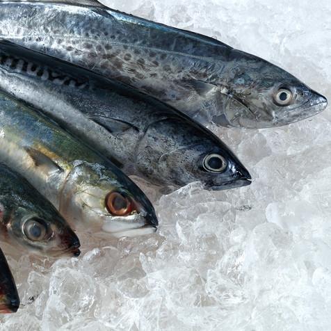 Sunny Seafood Fresh Fish