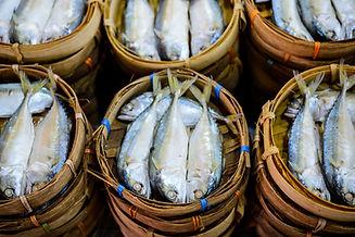 Fresh Seafood Sunny Seafood