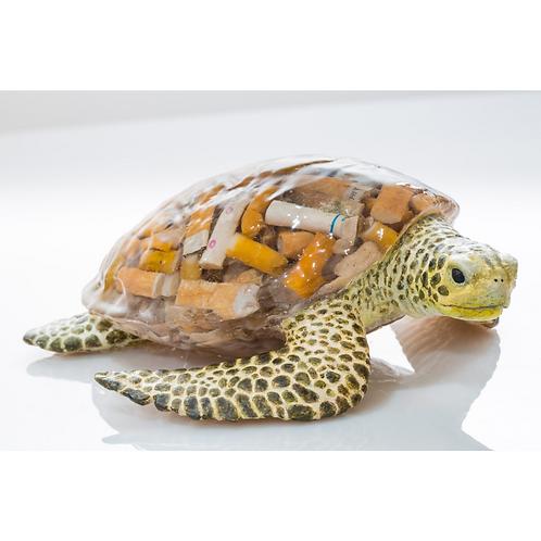 Teenage Mutant Fag End Turtle (Sculpture) - (Scapa Joe)