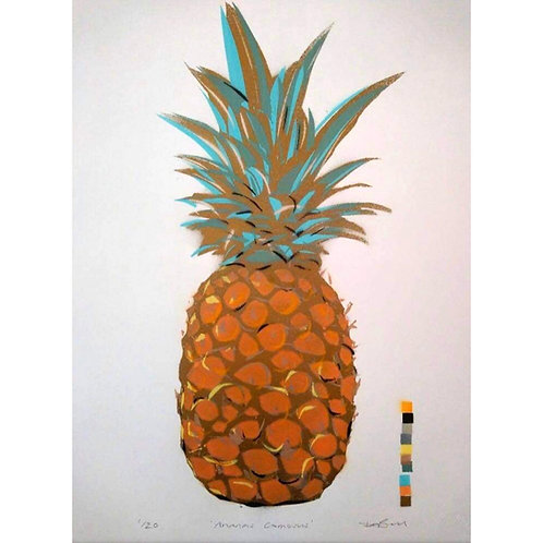 Ananas Comosus (Pineapple) - (Dylan Bell)