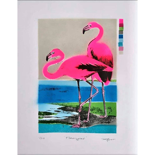 Flamingoes (Dylan Bell)