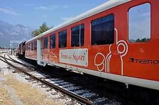 treno (2).JPG