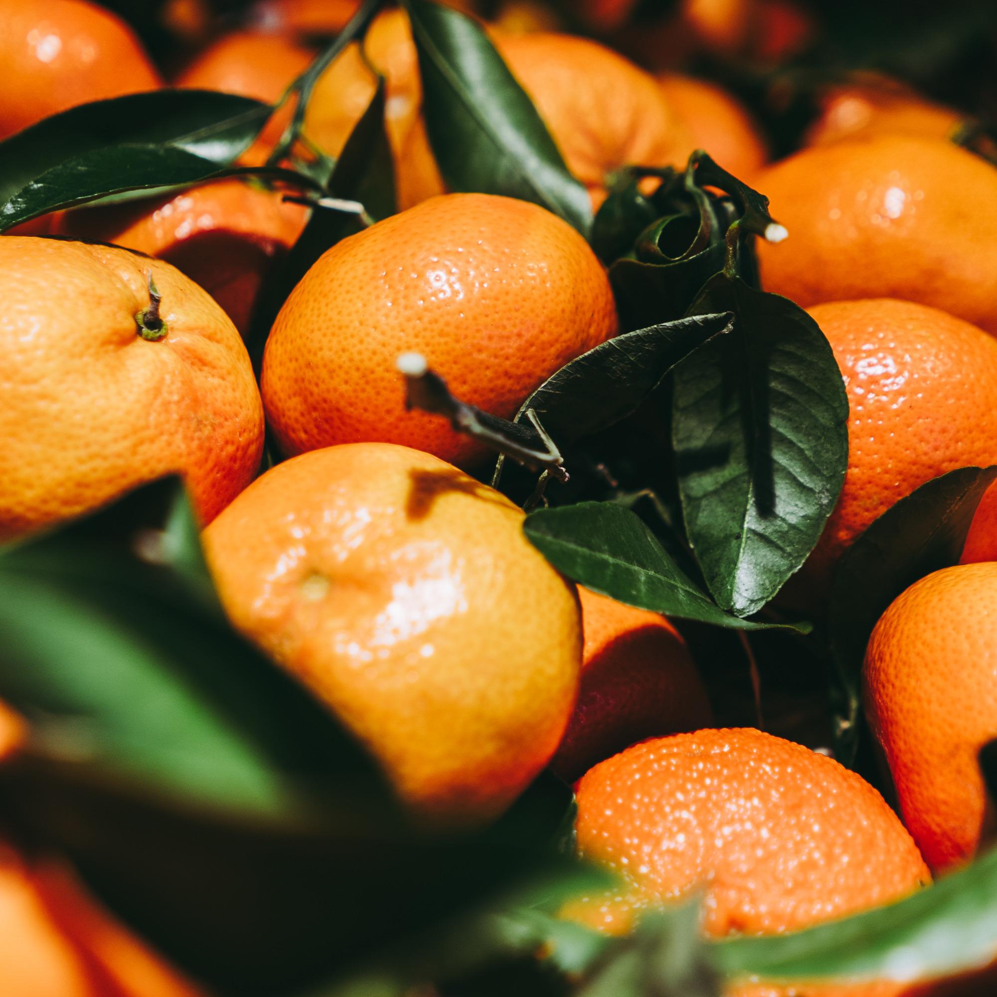 Clementinen, unbehandelt