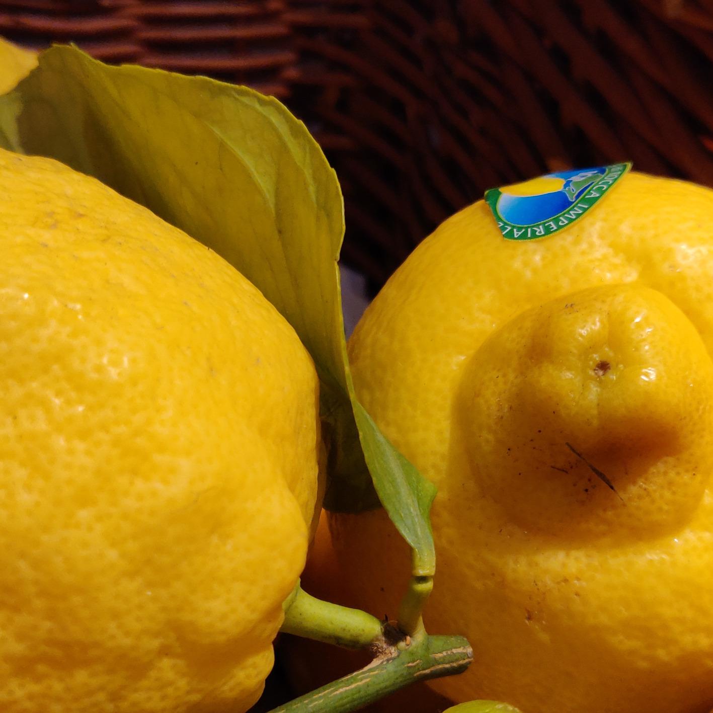 Zitronen, unbehandelt
