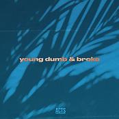 Young Dumb Cover Art.png
