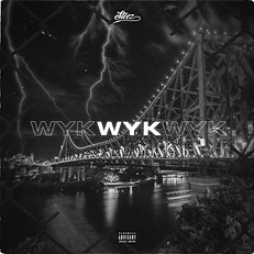 Steez - WYK Cover Art.png