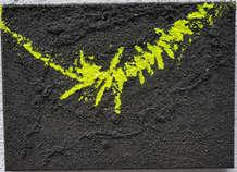 BSL-041 Green Centipede .jpg