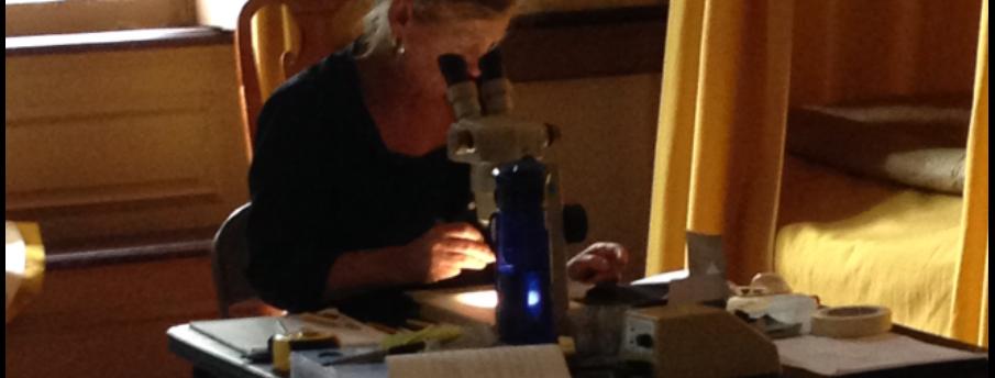 Paint Finishes Analyst Catherine Myers