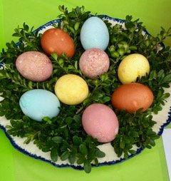 egg dye.jpg