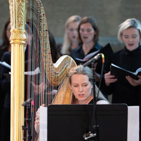 Harp - Harriet Adie