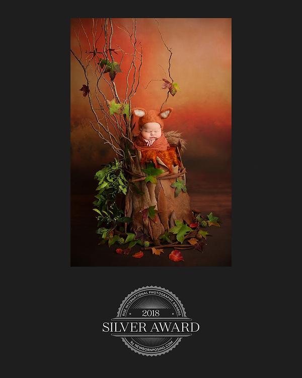 award 3.png