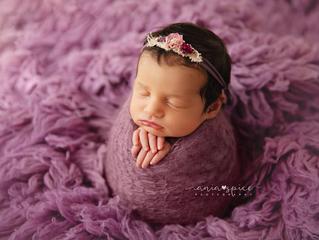 Baby Sierra