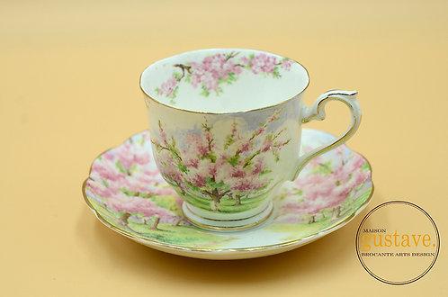 Blossom Time par Royal Albert