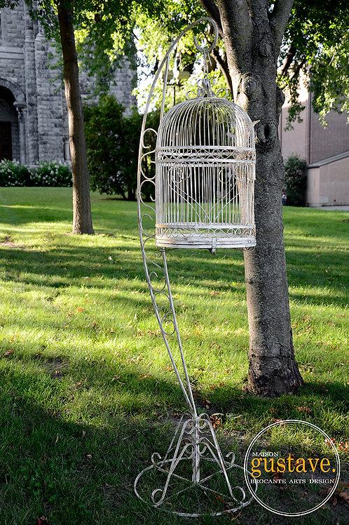 RÉSERVÉ* Grande cage à oiseau en fer forgé