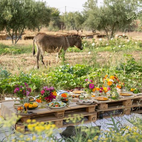 Photography: Virginie Faucher http://www.virginiefaucher.com | Catering: Gaia | Floral decor: Le Kiosque a Fleurs Marrakech https://www.lekiosqueafleurs.com
