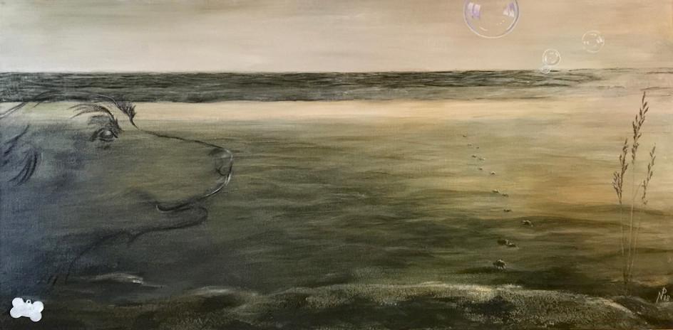 #1803 - Doby - Footprints...