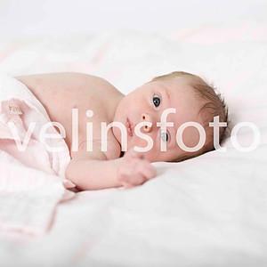 Elise nyfödd