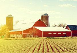 services-farm.jpg