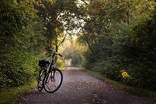 bike-2769021_1920.jpg