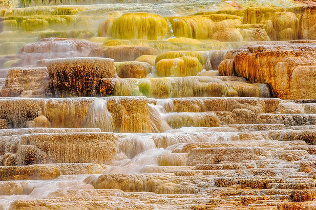 Yellowstone Palette.jpg